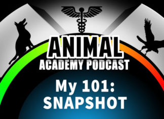 The 01 Snapshot for The Animal Academy Podcast