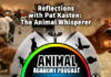 Pat Kasten - A Guest on The Animal Academy Podcast with Allison White!