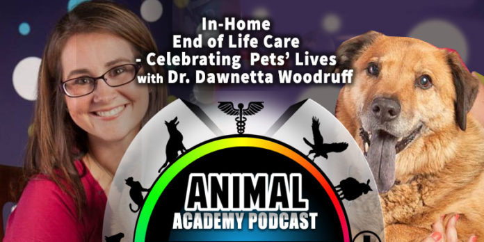 The Animal Academy Podcast - Celebrating The End-of-Life for a Pet, At-Home...