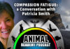 The Animal Academy Podcast: Patricia Smith Tells Us All About Compassion Fatigue...