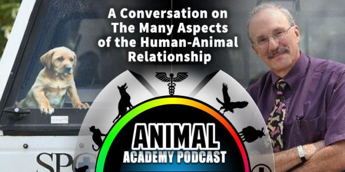 The Animal Academy Podcast: Phil Arkow Explains