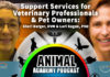 The Animal Academy Podcast: A Passionate Stockpile of Veterinary & Pet Owner Information