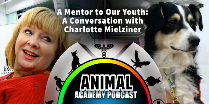 The Animal Academy Podcast: Creating Future Dog Trainers that Have Impact - Thanks to Charlotte Mielziner