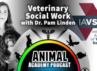 The Animal Academy Podcast: Detailing the Training & Experience Involved When Working with Those Who Work with Animals